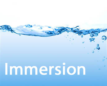 customer immersion programs